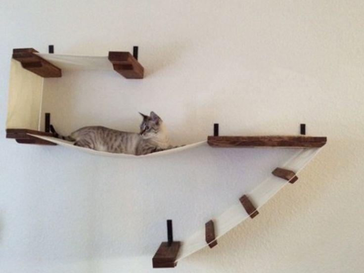 1000 Images About Katten Klimsysteem On Pinterest Cat