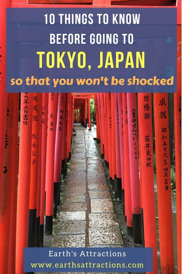 Visiting Japan: 10 Things to know before going to Tokyo so that you won't be shocked