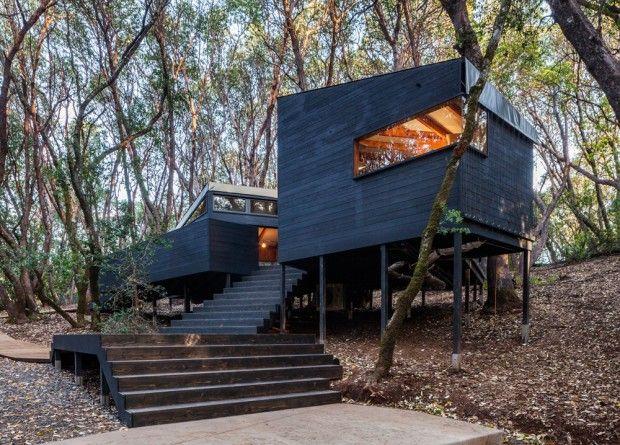 Forest House, maison dans une forêt de Californie du Nord par Envelope Architecture + Design - Journal du Design