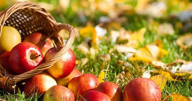 8 Tips Dapatkan Kulit Indah Dengan Buah Apel