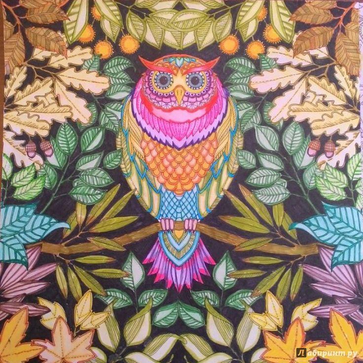 Иллюстрация 70 из 71 для Таинственный сад. Книга для творчества и вдохновения - Джоанна Бэсфорд | Лабиринт - книги. Источник: Виктория Е.