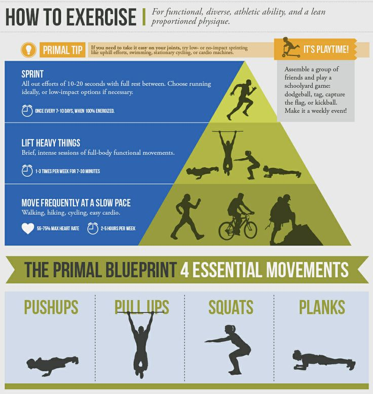 24 best blueprint fitness images on pinterest fitness gymnastics exercising according to the three primal blueprint laws will optimize gene expression and promote primal fitness malvernweather Gallery