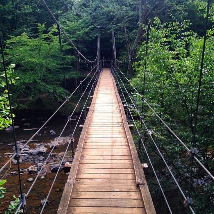 Minutes from Durham and Chapel Hill, the Eno River State Park offers secluded wilderness trails with the serenity and sounds of the river. Take a break from civilization and march into the wild.