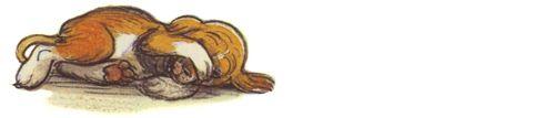 Кто сказал «мяу»? Сказки и картинки Владимира Григорьевича Сутеева | Сказки для детей. Рассказы и сказки с картинками