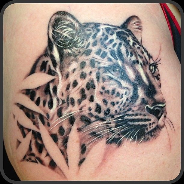 leopard tattoo by craig goss in ink pinterest ps leopards and leopard tattoos. Black Bedroom Furniture Sets. Home Design Ideas