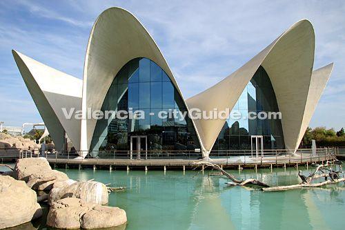 Oceanografic Valencia | Oceanarium | Aquarium Marine Park