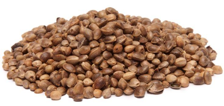Hemp Seeds -By the Pound - Nuts.com