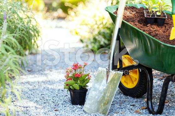 Gardening Equipment In Garden royalty-free stock photo