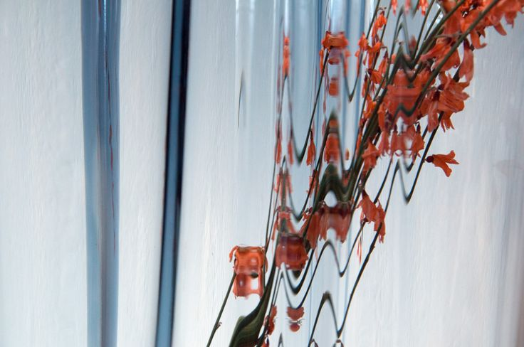 I love these games with glass and flowers in Alvar Aalto vase http://blog.terve.cz/vaza-aalto-a-posledni-zachvevy-zimy/