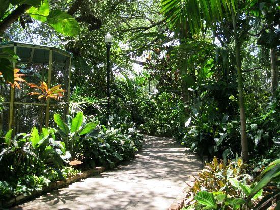 Sunken Gardens St Petersburg Fl Been There Done That Pinterest Gardens Sunken Garden