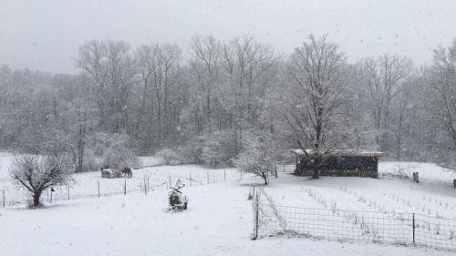 Central OH school Closings, delays amid winter weather... #schoolclosings: Central OH school Closings, delays amid winter… #schoolclosings