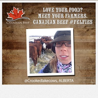 Love your food? Meet your #CanadianBeef #Farmers  #Felfie #Alberta cc @CrookedLakeCows