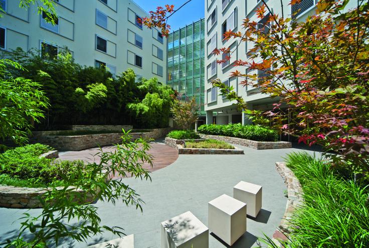 Advanx Residential Development, Rushcutters Bay