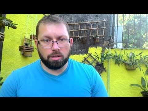 Podridão negra , tripes , pulgão e doenças das orquídeas - YouTube
