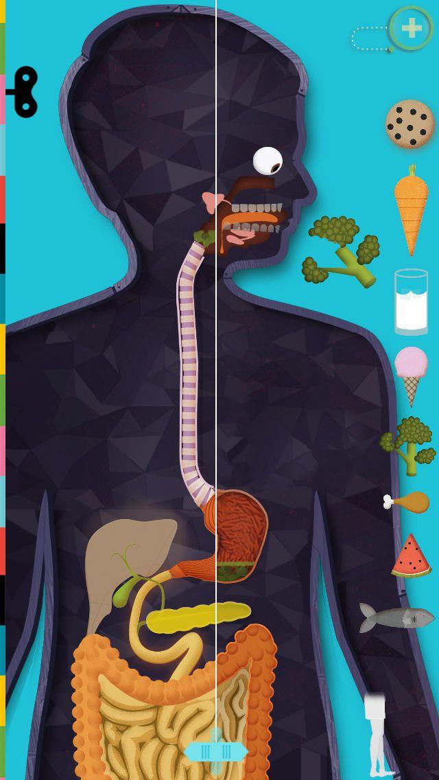 DÉCOUVERTE DU MONDE - Le corps humain est une application d'exploration de l'anatomie humaine, pour les enfants à partir de 5 ans, de préférence accompagnés