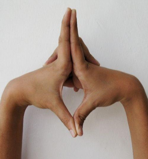 Uttarabodhi Mudra - relaxa e recarrega as baterias do corpo. Relaxar os nervos e músculos. Pode ser feito para qualquer duração, ao deitar ou sentado.Coloque os dedos indicadores e polegares respectivos. Dedos indicadores apontam para cima e para baixo, polegares. Os outros dedos permanecem interligados. A posição das mãos devem estar na frente do Plexo Solar (um pouco acima do umbigo). Ao praticar: estou relaxado, meus nervos estão soltos, eu estou flutuando e energia está enchendo o meu…