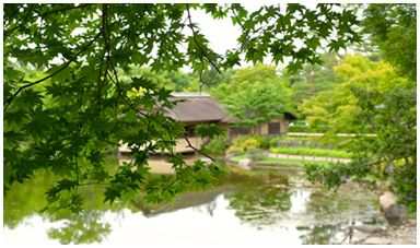 立川駅周辺の「国営昭和記念公園」