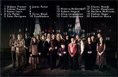 Harry Potter BlogHogwarts Orden del Fenix Original