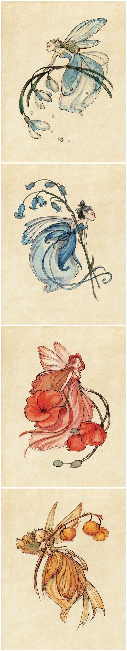 Illustrations by Casey Robin