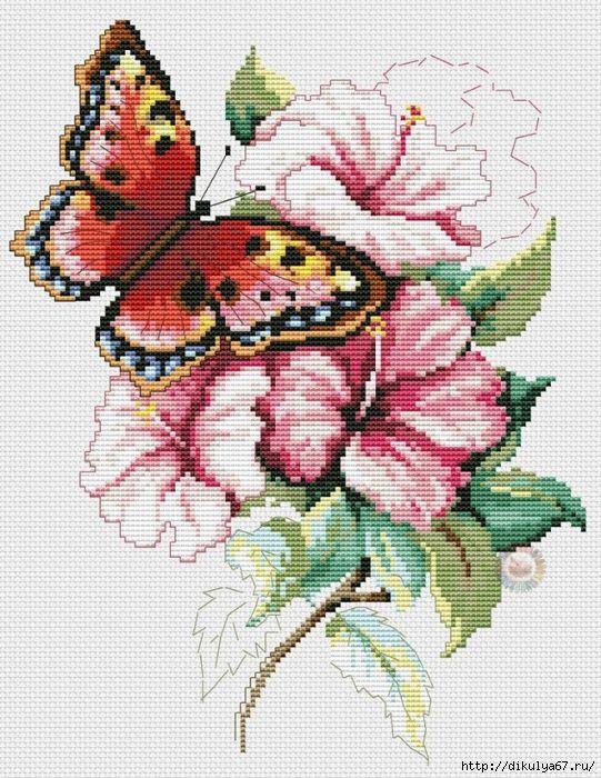 Вышивка крестиком. Бабочки <b>1. 2. 3. 4. 5. 6</b>. 7. 8. 9. 10. 11. 12. 13