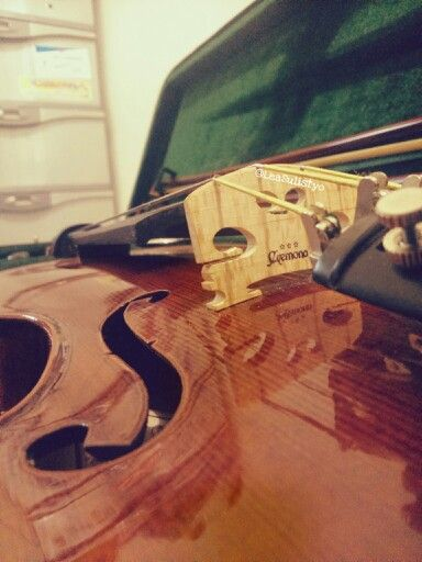 Cremona. #violin
