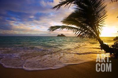 Sunrise at Lanikai Beach in Hawaii Photographic Print by tomasfoto at Art.co.uk