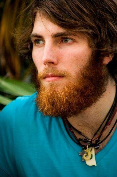 145 best gingerly moist images on pinterest red heads for Red beard tattoo