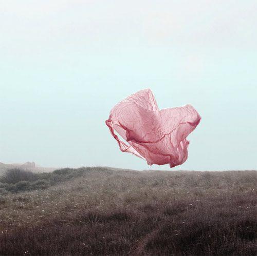 Photographer Beatrice Jansen | pink plastic bag