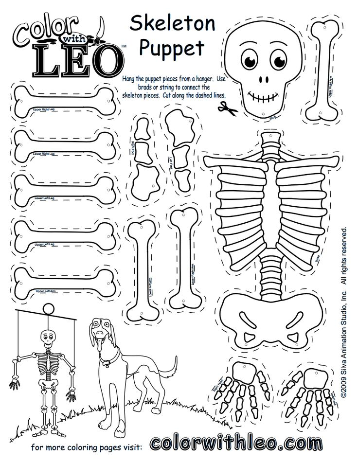 CPG0060-SkeletonPuppet.pdf