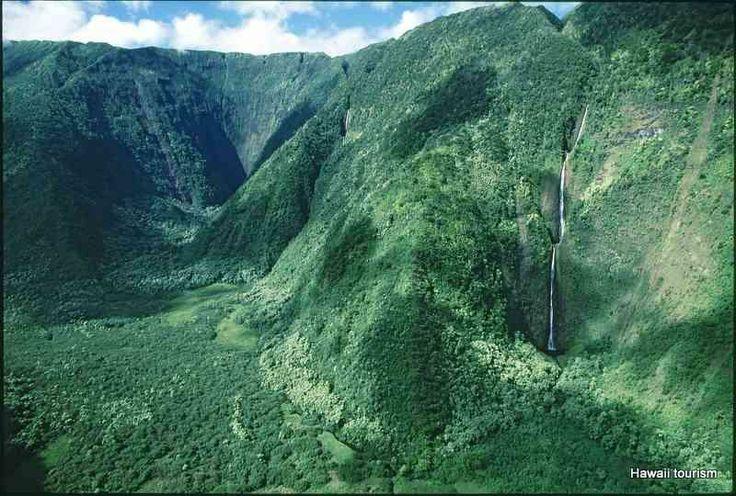 Rainforest On The Big Island: 21 Best Historic Hamakua Coast Crawl Images On Pinterest