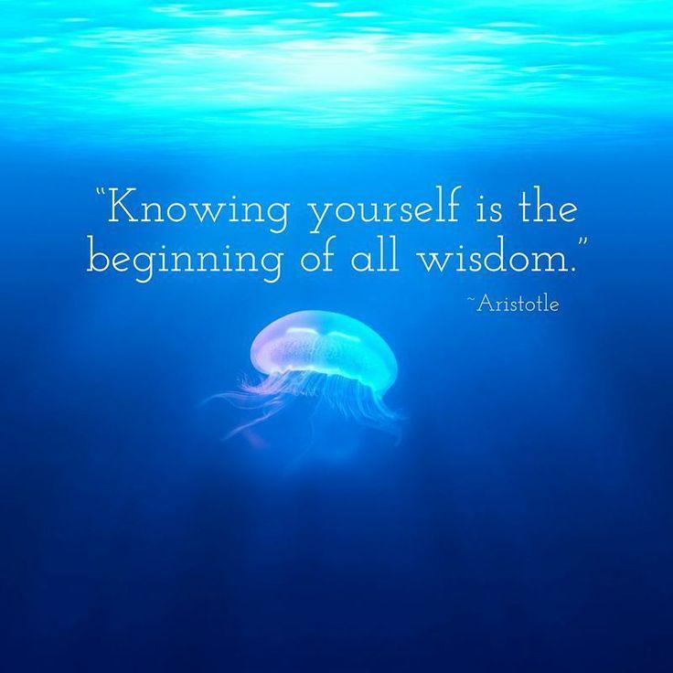A little Aristotle today. http://ift.tt/2lZL0kD