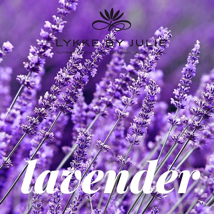 Did you know that lavender is both wound healing and balances the skin? The essential oil can also be used undiluted and directly on the skin.