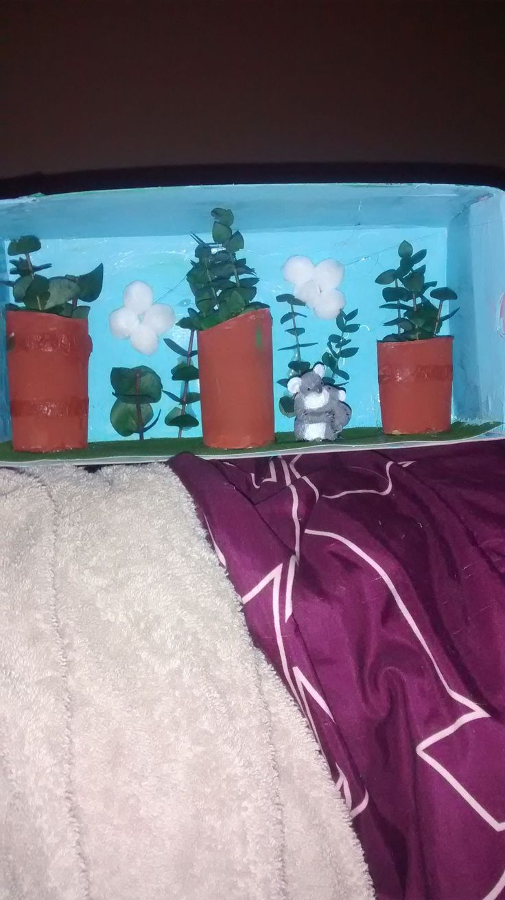 Kids Diorama With Details: Pin By Wilma Van Rensburg On Shoe Box Project