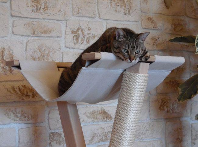 les 42 meilleures images propos de mobilier pour chats sur pinterest we design et mode. Black Bedroom Furniture Sets. Home Design Ideas