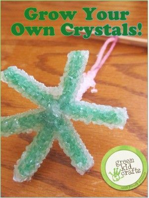 Grow Your Own CrystalsGreen Kid Crafts