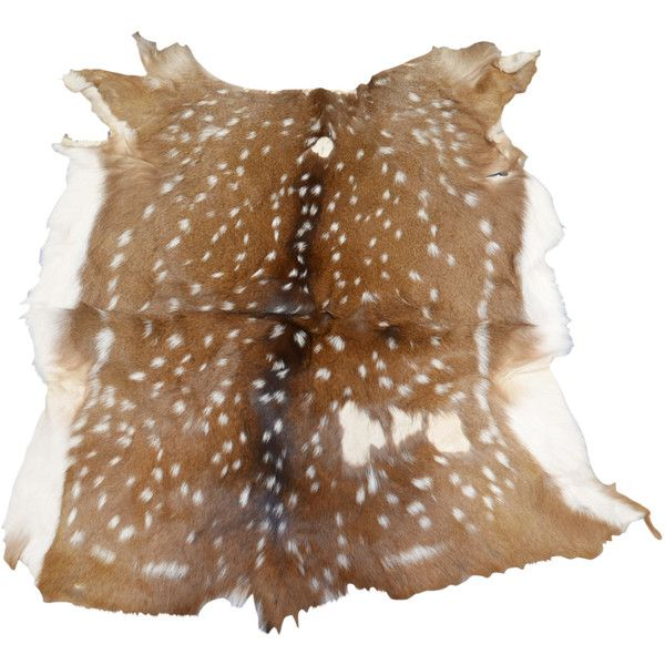 Second Quality Medium Size Axis Deer Skin From Argentina Axis Deer... ($129) ❤ liked on Polyvore featuring home, rugs, floor & rugs, home & living, silver, cow rug, india rug, animal area rugs, animal rug and indian rug