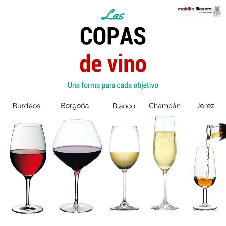 Infografía tipos de copa de vino