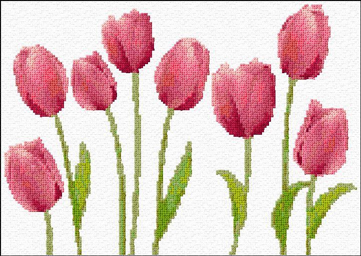 Punto de Cruz | Tulipanes xstitch Gráfico | Diseño