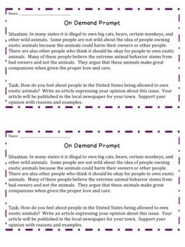 Best  Opinion Writing Prompts Ideas On Pinterest  Opinion  Best  Opinion Writing Prompts Ideas On Pinterest  Opinion Writing  Opinion Writing Second Grade And St Grade Writing Prompts