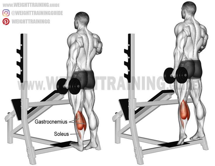 Standing dumbbell one leg calf raise. An isolation exercise. Target muscle: Gastrocnemius. Synergistic muscle: Soleus.