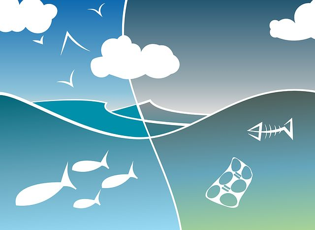 3 karakteristik limbah(karakteristik fisik, karakteristik kimia serta karakteristik biologi pada limbah)
