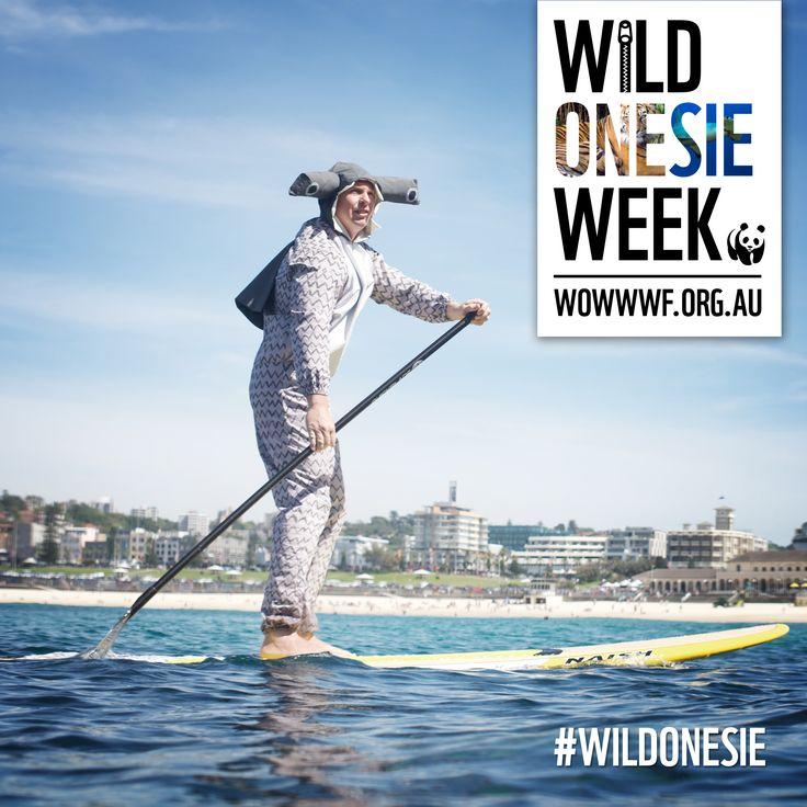 We teamed up with #WWF to create Wild Onesie Week! #wildonesie #WOWWWF #bondiadvertising #advertising #bondi
