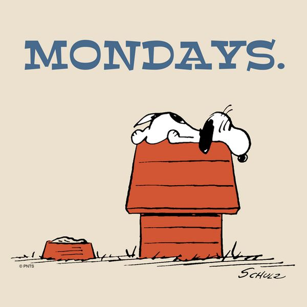 Mondays. Or any work day really.
