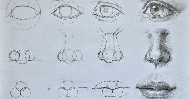 step by Step face drawing