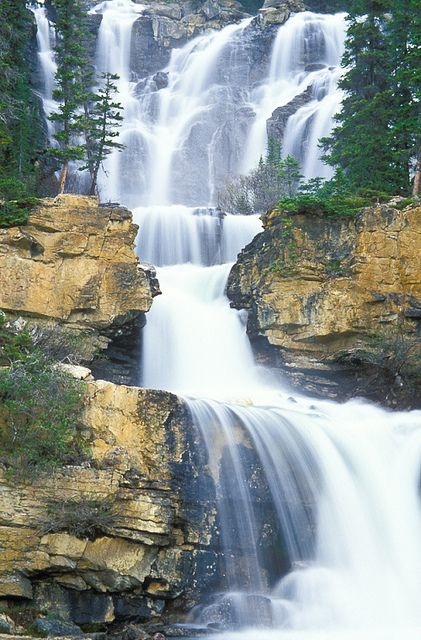 Tangle Falls just off the Icefields Parkway. Jasper National Park, Alberta, Canada