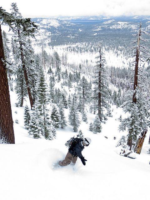 Open Tree Runs - Snowboarding - Tumblr