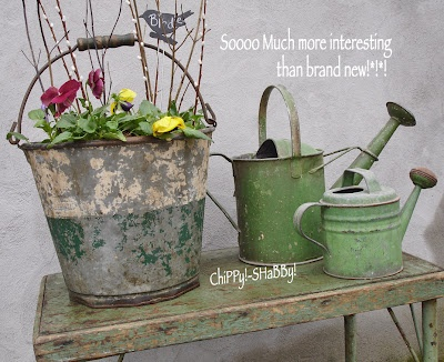 Watering cans: Tubs Buckets Wat, Cans Buckets Tubs Zinc, Vintage Water, Gardens Buckets, Vintage Gardening, Green Vintage, Vintage Gardens Looks, Patinas Vintage Gardens, Weather Buckets