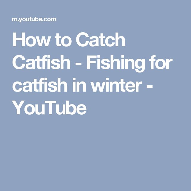 How to Catch Catfish - Fishing for catfish in winter - YouTube