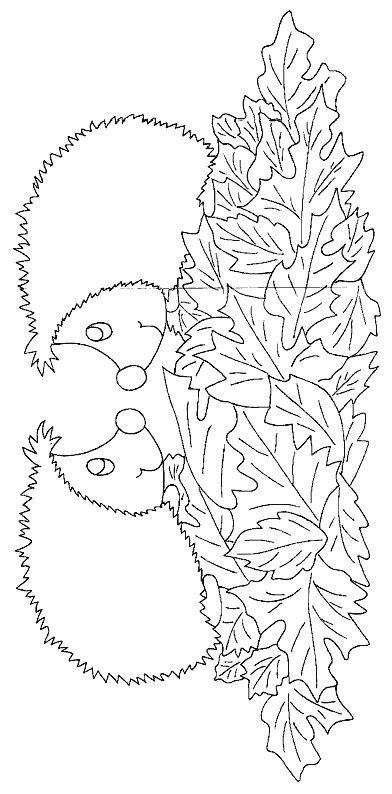 Ausmalbild Igeln - Igeln