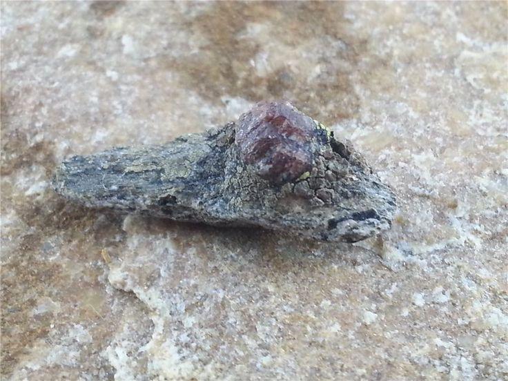 Granat auf Muttergestein Rohstein Edelstein roh Mineralien D